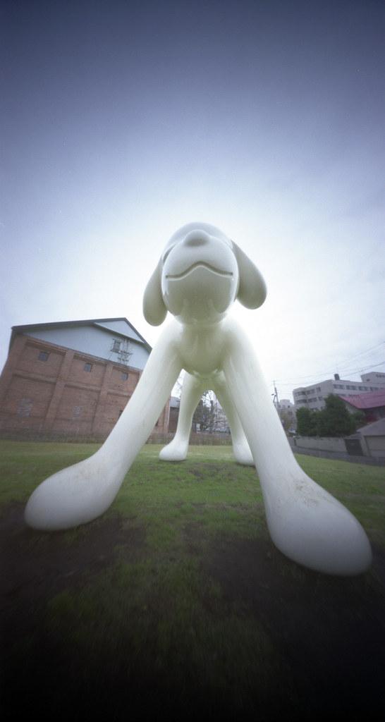 2009/12/11 弘前市 ワンコ