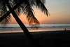 """Sunset and palm trees • <a style=""""font-size:0.8em;"""" href=""""https://www.flickr.com/photos/46837553@N03/4308555532/"""" target=""""_blank"""">View on Flickr</a>"""
