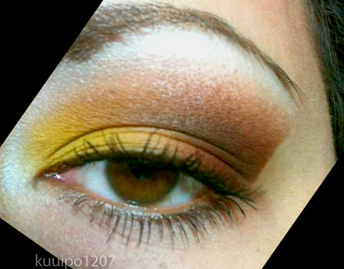 BFTE Fall Inspired Colors Closeup