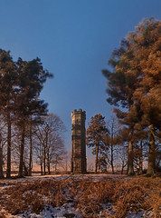Keiths Tower - windy (Mel Stephens) Tags: uk winter plants plant building tree monument landscape geotagged ir scotland ancient flora aberdeenshire olympus structure best infrared manmade gps favourite scape stitched plantlife 2010 deeside