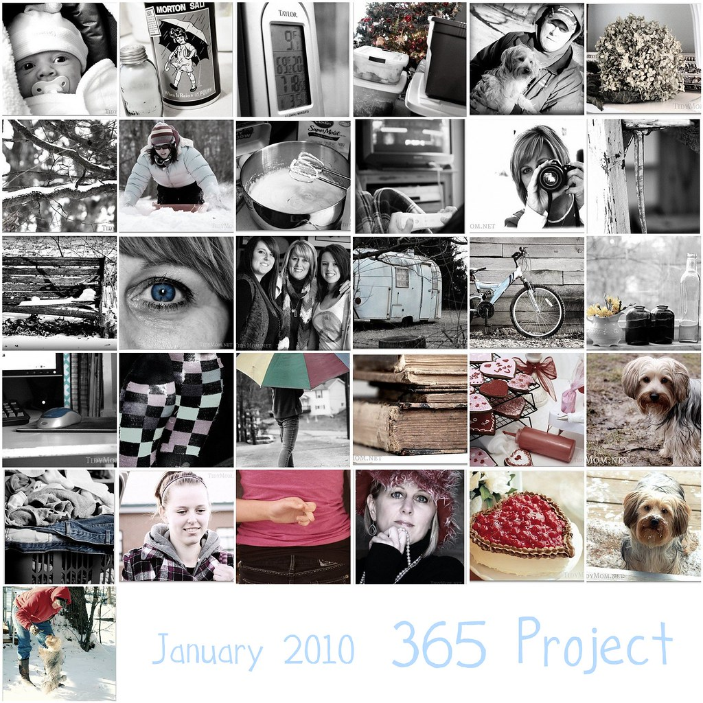 January 2010 {365}