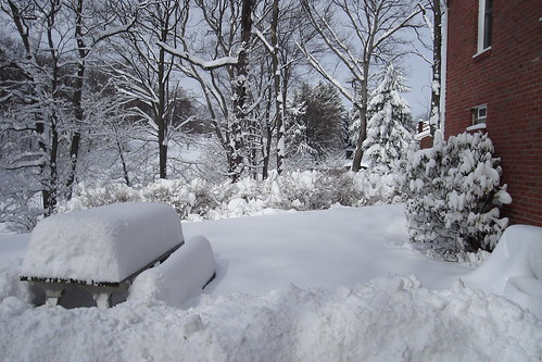Here is my house in Pennsylvania covered in snow!