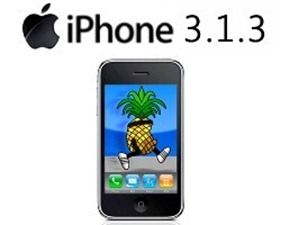 firmware iphone 3g 3.1.3