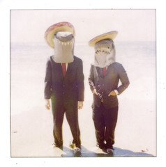 hola (Claire Marie Vogel) Tags: music silly records men beach marie polaroid photography shark photo claire funny suits kill shoot album attack business suit ty masks cover photograph record sharks sombrero laguna reverse shaman segall vogel mikal cronin