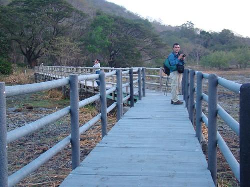 Palo Verde 12 - 14 feb. 2010