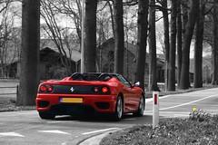 Ferrari 360 Spider. (klaas brink) Tags: flower colour spider 360 ferrari klaas gras selective brink ommen hardenberg kbrink