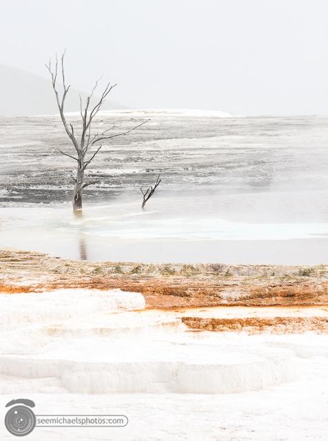 Yellowstone Day 1 52611 © Michael Klayman-014