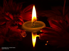 The Divine Light - The Jyoti Explore # 322 (Ar.Shakti Nanda) Tags: light india flower colour reflection nature night golden deepak artistic indian olympus architect nanda diwali deepa deepawali shakti devine jyoti bhubaneswar diya dipak shaktinanda
