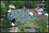 2009-05-31 Dunya 1 (Topaas) Tags: rotterdam parkbijdeeuromast zomerfestivals dunyafestival