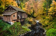 Misty Morning on the Mill (Deej6) Tags: autumn fall mill creek river landscape washington pacific northwest cedar grist d80 impressedbeauty platinumheartaward theperfectphotographer tokina1116