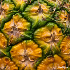 Texture (monteregina) Tags: plants canada abstract macro texture closeup fruit patterns details shapes structure qubec abstraction pineapples bromeliaceae plantae ananas plantes desing abstrait formes ananascomosus monteregina