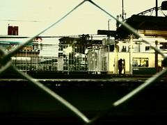 91/365: Link (joyjwaller) Tags: boy station japan train fence tokyo framed chainlink transit bleak disconnected ogawa project365
