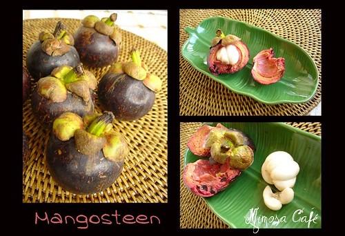 Mangosteen-k