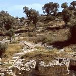 Ibiza: Necrópolis fenicio-púnica de Puig des Molins, patrimonio de la humanidad