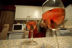 Strathy_Scotland_53 (jjay69) Tags: uk england flower scotland highlands wine britain cottage lodge croft alcohol sutherland pour edible sparkling chistmas fizz strathy northernscotland