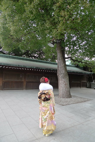 Kimono lady under the tree