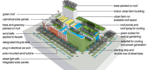 reforestation & green urban design techniques (by: Vanessa Keith)