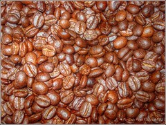 Granos de Café (HDR) (Fernando Reyes Palencia) Tags: guatemala paisajesdeguatemala bellospaisajesdeguatemala fotosdeguatemala bellaguatemala paisajesdelmundo guatemalalandscapes fotosfernandoreyespalencia imagenesdeguatemala fotoshdr guatemalapaisajes postalesdeguatemala