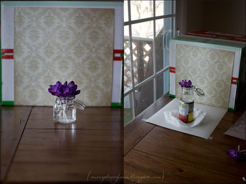 IMG_0975-setup-blog