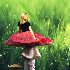 Wonderland (Cullen Golden) Tags: mushroom grass photoshop canon movie golden colorful bright little sister alice wonderland edit xsi cullen