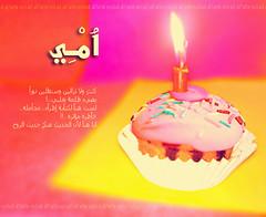 () Tags:         al7arbi