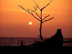 Calicut beach -Serene (aroon_kalandy) Tags: light sunset orange india beach nature beauty creativity boat asia adobephotoshop artistic awesome kerala fantasy greatshot serene impressions graceful naturelovers indiansunset calicut beautifulshot anawesomeshot malayalikkoottam natureselegantshots sonyh50 micartttt aroonkalandy theoriginalgoldseal flickrsportal michaelchee micarttttworldphotograhpyawards