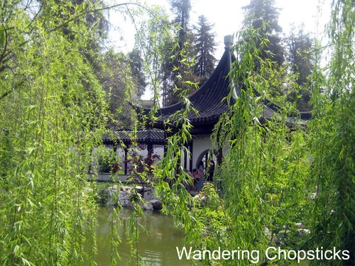 The Huntington Library, Art Collections, and Botanical Gardens (Chinese Garden) (Spring) - San Marino 6
