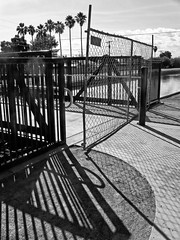 Grand Opening (The Official Holly Ferocious®) Tags: bridge arizona blackandwhite bw clouds canon canal blackwhite shadows stripes az powershot chainlink palmtrees pointandshoot amateur mesa pointshoot dustylens a590is canona590is