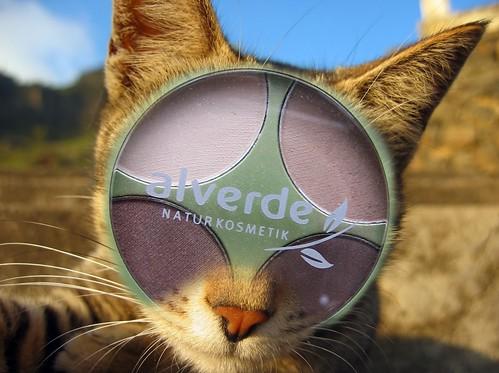 Alverde-Katze