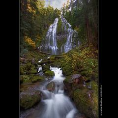 Proxy Falls (David Gn Photography) Tags: oregon landscape waterfall scenic hdr proxyfalls 3xp photomatix sigma1020mmf35exdchsm canoneosrebelt1i