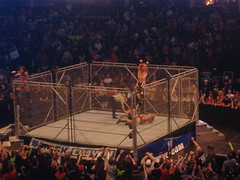 DX (Triple H and Shawn Michaels) Vs. Legacy (Cody Rhodes, Ted Dibiase Jr.)