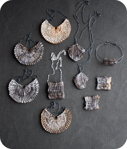 shells & feathers