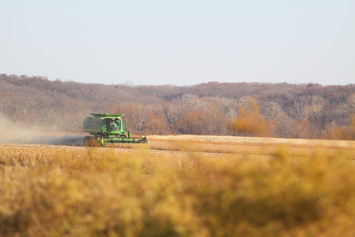 11-10-crops1