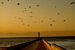 Pointing at Dover (Tony Shertila) Tags: sunset sea france water port europe calais englishchannel lamanche photographyrocks colorphotoaward windsandandwater platinumheartaward scenicsnotjustlandscapes thesleeve platinumpeaceaward mygearandmepremium mygearandmebronze
