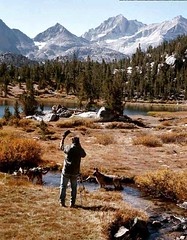 Buck Forester at work (Dan M.) Tags: buckforester