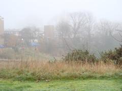 Fog on the Heath-54 (Julie70) Tags: london weather fog photo december unitedkingdom greenwich londres angleterre 2009 brouillard sonycybershot humidity decembre kd allweather humide julie70 ceata copyrightjkertesz photojuliekertesz photojulie70 differentweathers usingweather