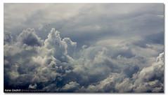 Up Up Up and Away ([ Kane ]) Tags: sky bird weather birds clouds pareidolia high mood driving brisbane qld queensland kane simple gledhill 50d kanegledhill wwwhumanhabitscomau kanegledhillphotography