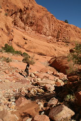 IMG_8168 (loveexploring) Tags: usa southwest capitolreef