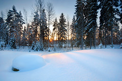 Untouched (Mikko Lagerstedt) Tags: blue trees light sunset shadow red snow cold color green art nature colors beautiful field lines rock photoshop suomi finland landscape photography photo nikon colorful shadows view graphic natural image photos unique fineart stock fine perspective smooth award sigma finnish 1020mm sell untouched 2009 mikko 2010 resize latyrx d90 nikond90 mikkolagerstedt lagerstedt