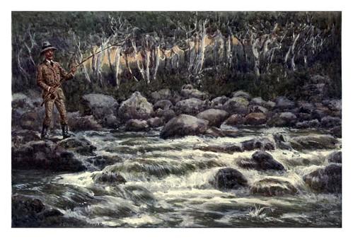 025-Pescando en un rio truchero-Australia (1910)-Percy F. Spence