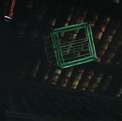 Green Birdcage (khai_nomore) Tags: 120 film mediumformat negative historical f56 kiev88 rm ancestoral autaut arsatb80mmf28 jalanstonor fujifilmnpz800expired2007 malaysiaheritagetrust relocatedtokualalumpur penghuluabusemanresidence