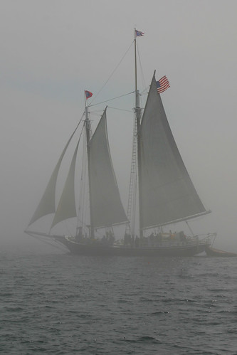 Schooner Steven Taber in the fog