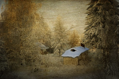 White Top (Barry_Madden) Tags: trees winter house snow tree texture home nature photoshop canon suomi finland evening countryside scenic explore textures talvi sauna koti 2010 lappeenranta 50d