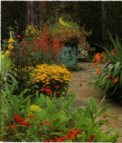 yellow orange red in sunset garden (gardening at sissinghurst - Tony Lord)