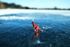 Surviving This Ice Age Game (Button Machine) Tags: winter snow toronto canada ice toy toys highpark dinosaur trex tyrannosaurusrex grenadierpond
