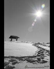 shining (mcPhotoArts) Tags: schnee winter blackandwhite bw sun snow nature germany landscape bayern deutschland bavaria blackwhite cabin natur cottage htte tracks spuren sw monochrom wintertime schwarzweiss landschaft sonne shining wank garmischpartenkirchen leuchtend winterzeit schwarzundweiss canoneos400d scheinend sigma1770mm2845dcmacro photoshopcs4 bumblebeephotografix ffgapashow