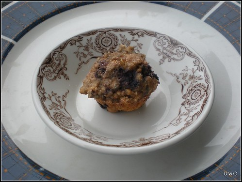 Blueberry Oatmeal Whole Wheat Muffin