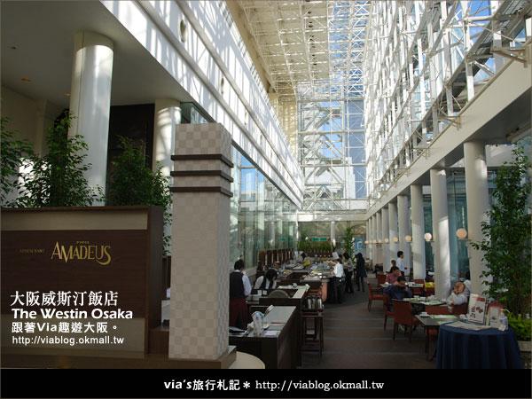 【via關西冬遊記】大阪住宿推薦~The Westin Osake大阪威斯汀飯店39