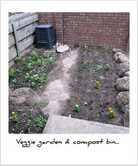Our veggie garden