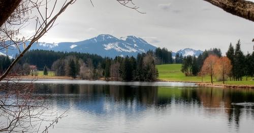 An diesem Teich müßte ich schon mit rund 3 Jahren herumgeplanscht haben.